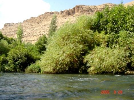 Kasyan (Hürmüz Nehri)